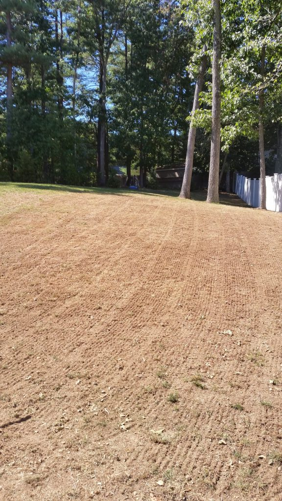 before lawn renovation