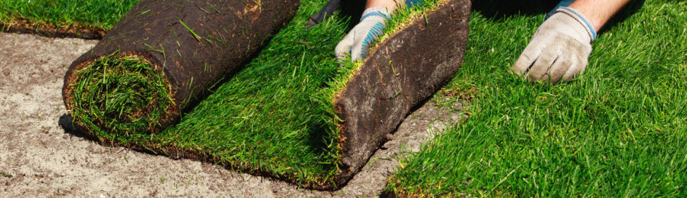 Installing Lawn Properly